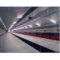 Poultry drinker for broilers and layers Manufactures