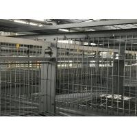 Quality High Strength Poultry Farm Water System Broiler Watering System Simple Structure for sale