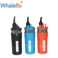China Whaleflo  12v/24v DC 6LPM 100 Feet Solar Powered Deep Well Submersible pump Remote Domestic Usage on sale