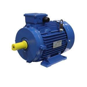 IEC F Class MS132S-4 3KW 4HP 3 Phase Induction Motor Manufactures