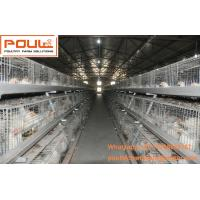 Poultry Equipment Steel Sheet Silver Battery Broiler Chicken Cage  System with Automatic  Feeding&Drinking System Manufactures
