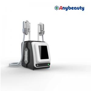FDA Spa Beauty Abs Ems Machine Professional For Weight Loss Manufactures