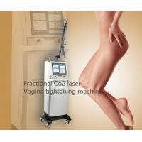 Sincoheren Fractional Co2 Laser Scar Removal Machine Acne Treatment Vigina Tightening Machine Manufactures