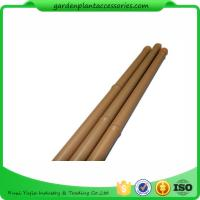 Heavy Duty Bamboo Garden Stakes , Round Bamboo Stakes For Garden Manufactures