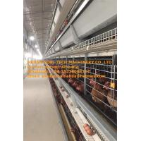 Buy cheap Poultry Chicken Farm Hot Galvanized Cage H Type Automatic Layer Cage & Chicken from wholesalers