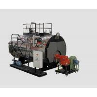 Automatic 2 Ton Gas Fired Steam Boiler For Radiant Heating , High Pressure Manufactures