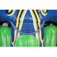 Quality Giant inflatable flying manta, inflatable flying Kite Tube, inflatable flying for sale