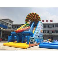 Inflatable Dry Slide Manufactures