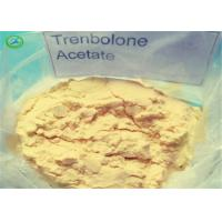 Healthy Yellow Trenbolone Powder Trenbolone Acetate / Tren Acetate For Safe Bodybuilding Manufactures