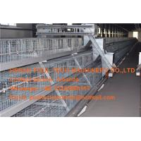 Quality Livestock Farming Steel Sheet Silver Automatic Broiler Chicken Cage with Feeding for sale