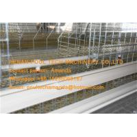 Quality Hot Galvanized Cage in Poultry Farm A Type Automatic Day Old Chicken Cage Equipment with 162 Birds in Chicken Shed for sale