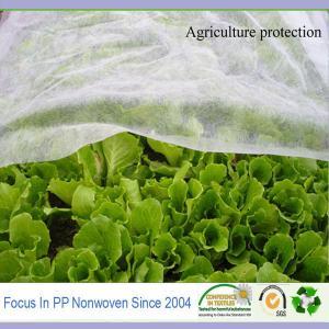Durable Non Woven Garden fabric agriculture cover Manufactures