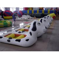 White Inflatable Fishing Boats 0.9mm PVC Tarpaulin For Playing Center Manufactures