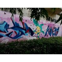Quality Custom Color Flexible Spray Paint Graffiti Wall Painting Material For Metal for sale