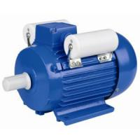 Dual Capacity Single Phase Induction Motor Easy Maintenance For Pumps Manufactures