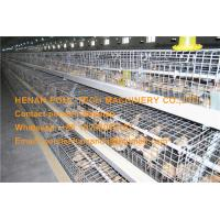Poultry Farm Battery Day Old Chicken Cage Coop for Brooding Room with Automatic Feeding & Drinking System Manufactures