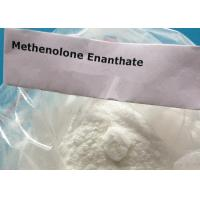 White Powder Masteron Enanthate Drostanolone Enanthate Anabolics Steroid CAS 472-61-145 Manufactures