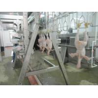 chicken slaughtering line Manufactures