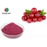 Health Organic Herbal Extracts Cranberry Fruit Juice Concentrate Powder Manufactures