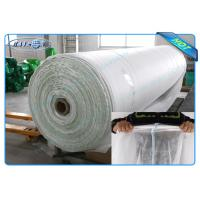 Biodegradable 100% PP Spunbond Non Woven Landscape Fabric for Garden Plant Protection Manufactures