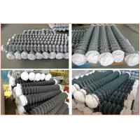 Diamond Mesh Fencing Galvanized Wire Powder Coated Chain Link Fencing Manufactures