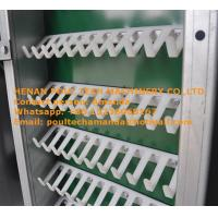 Poultry Chicken Farm Equipment Hot Galvanized Cage H Frame Battery Layer Cage & Chicken Coop System with 84-224 Birds Manufactures