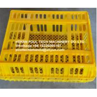 Poultry & Broiler Chicken Farm White Color PE Material Broiler Chicken Carriage Cage & Plastic Transport Cage for Sale Manufactures