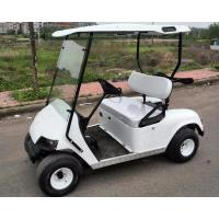 2 Seats Solar Powered Electric Golf Cart Manufactures