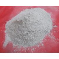 Activated Bleaching Earth Manufactures