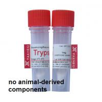 Sequencing Grade Recombinant Trypsin for in-gel Protein Digestion by shanghai yaxinbio Manufactures