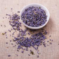 Buy cheap 4135 Xun yi cao Hot Sale High Quality Natural Planting Dried Lavender for Sale from wholesalers