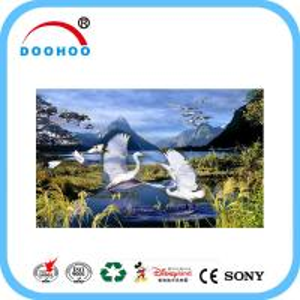 Eco friendly PET lenticular 3d posters with Flip effect 100LPI 75LPI