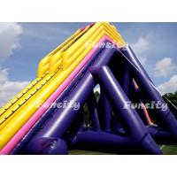 Quality Plato 0.55mm Pvc Tarpaulin 56*14.5*13.5m Giant Inflatable Hippo Slide For Adults for sale