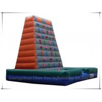 Great Fun Happy Land Inflatable Climbing for Children (CY-M2011) Manufactures