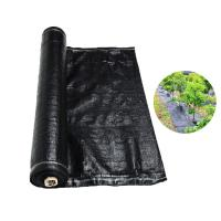 Recyclable Black Plastic Ground Cover , PP Woven Fabric Roll For Agriculture / Garden Manufactures