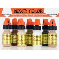 Semi Paste Mixing Colors Tattooing Ink Eyebrow Tattoo Ink Auxiliary Color Manufactures
