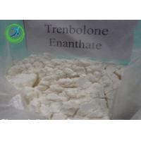 Anabolic Trenbolone Fat Burning Steroid / Trenbolone Enanthate CAS 472-61-5 Manufactures