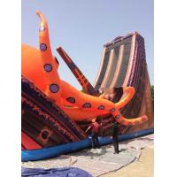 Inflatable Pirate Ship Toys , Inflatable Jellyfish Toys Inflatable Sports Toys Manufactures