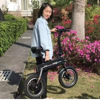Adult 2 Wheels Foldable Electric Scooter , Outdoor Activity Electric Bicycle Manufactures