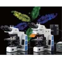 Optical Bright Field  Fluorescence Microscopy , Led Fluorescent Inverted Microscope Manufactures