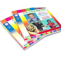 Full color printing 350gsm single glossy art paper Childrens Book Printing Service Manufactures