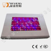 High Power 5watt AC85 ~ 264V Professional LED Grow Lights 75*5W With 440*340*70mm Size Manufactures