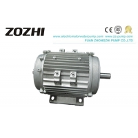 S1 Duty IE3 5.5KW IP55 Three Phase Asynchronous Motor Manufactures
