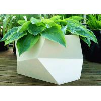 Irregular Multilateral Metal Stainless Steel Planter For Home / Hotel / Garden Manufactures
