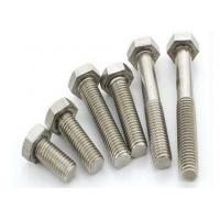 China Precision Stainless Steel Hex Head Bolts Customized Size For Industrial Buildings on sale