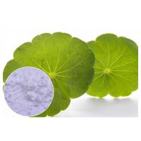 Cosmetic Herbal Plant Extract Centella Asiatica Powder With Madecassoside 90% CAS 34540 22 2 Manufactures