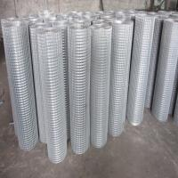 electric galvanized welded mesh Manufactures