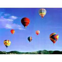 Hot Advertising Customized Flying Hot Air Balloon Flight For Two Custom Printing Manufactures