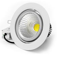 Warm white color 10W COB LED Ceiling down light Manufactures