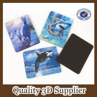 lenticular 3d magnets for promotional gifts Manufactures